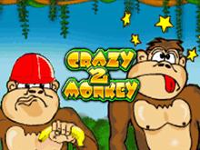 Бонусы Вулкан, аппараты Crazy Monkey 2