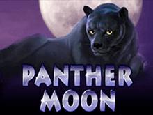 Бонусы Вулкан, аппараты Panther Moon