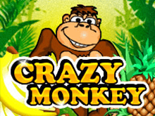 Скачать игровые автоматы Вулкан Crazy Monkey